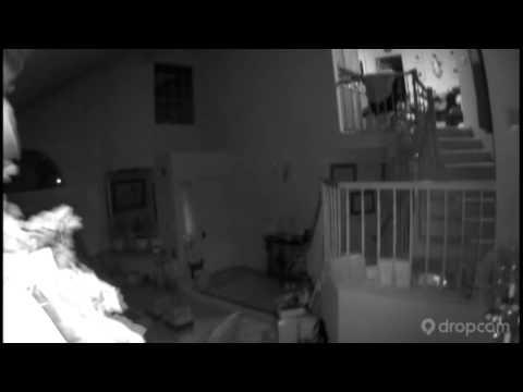 Surveillance Video of South Napa Quake