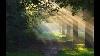 40 Minutes Sleeping Music   Meditation Music   Peaceful Soothing Sounds.