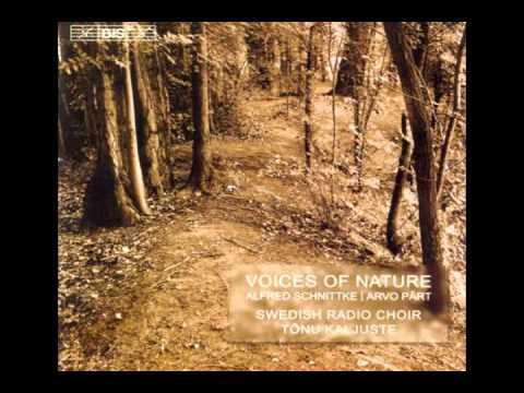 Alfred Schnittke - Choir Concerto - I. O pavelitel' sushcheva fsevo