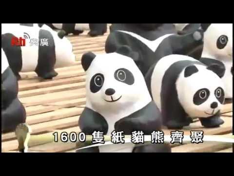 1600隻紙貓熊・齊聚兩廳院廣場│臺灣蒐羅《專題採訪》