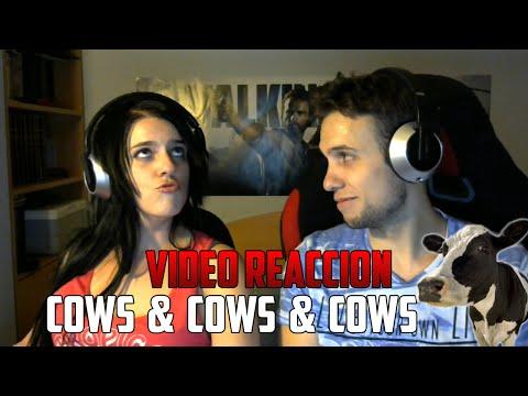 YUGO Y YAIMA VÍDEO REACCIÓN | COWS & COWS & COWS | WTF?