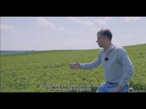AUGA crop rotation in organic fields