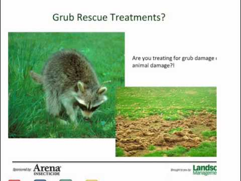 Webinar: Grub Control from business and technical perspectives