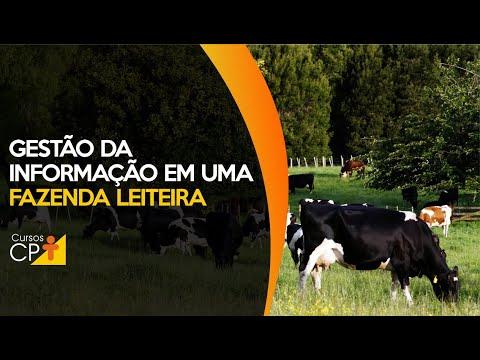 Clique e veja o vídeo Como fazer uma eficiente gestão da informação em uma fazenda leiteira