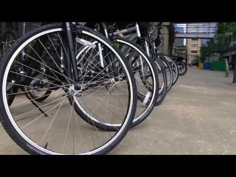 Kids + The Community: Golden Triangle Bike Rental