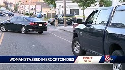 Woman stabbed in neck during apparent road rage incident dies
