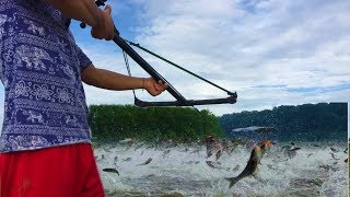 Make n Use -  Using PVC Crossbow And PVC Pipe Fishing To Shot Huge Fish