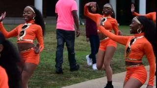 Video Adeeva Tigerettes download MP3, 3GP, MP4, WEBM, AVI, FLV Desember 2017