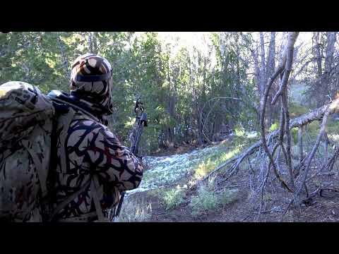 Jason grouse kill shot