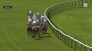 Vidéo de la course PMU PRIX ZARKAVA