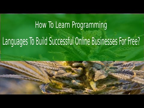 How To Learn Programming Languages To Build Successful Online Business For Free?