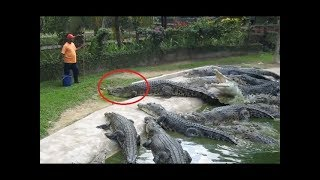 Try Not To Laugh Compilation # 8 🔵 Funny videos 2018 🔵Stupid people doing stupid things 🤣🤣🤣