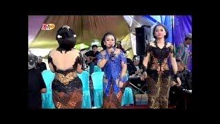 Download Mp3 Trio Ganas Puji Laras - Tembang Tresno Live Pondok Labu
