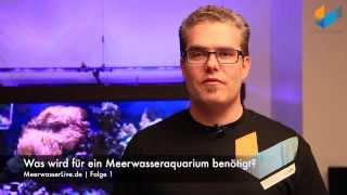 1.3 Was wird alles für ein Meerwasseraquarium benötigt? | Tutorial | Meerwasser Live TV