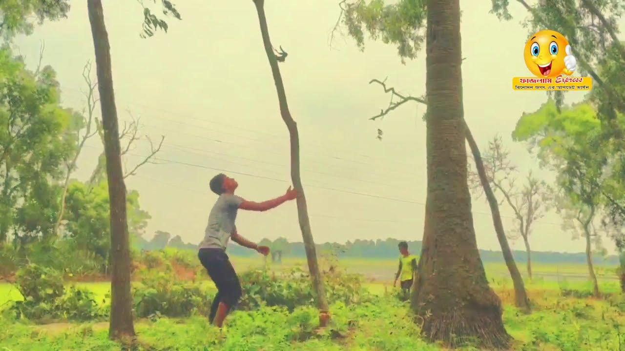 Download latest funny videos 2020 | হাঁসতে হাঁসতে পেট ব্যাথা |  Episode 02 | Fajlami Express  Pro