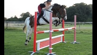 Jumping Molly 3ft6 spread