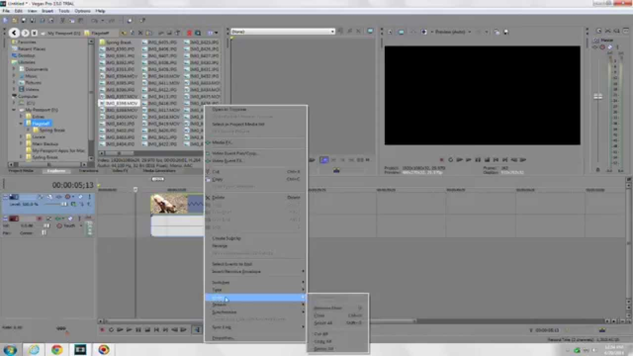Sony Vegas Pro 14 Tutorial How To Separate Your Audio From Your Video