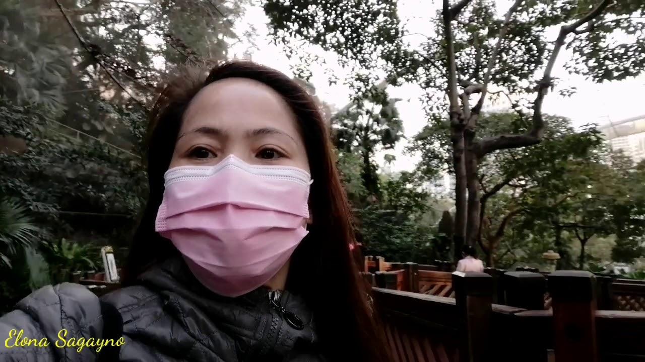 Hongkong Park/TAI CHI Garden/Edward Youde Aviary/Elona