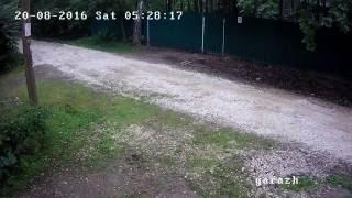 Видеокамера DS-I220 сняла как вор уезжает на велосипеде соседа(Вор вышел с украденным велосипедом через калитку, посмотрел на камеру, сел на велосипед и уехал. Заказывайт..., 2016-09-12T19:28:43.000Z)