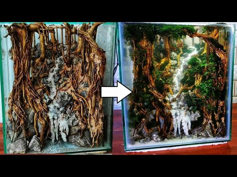#113-cara-membuat-aquscape-mini-tema-hutan-ukuran-kecil-30cm