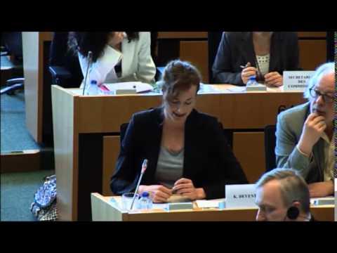 EFFE Presenation at the European Parliament, 16/04/2015