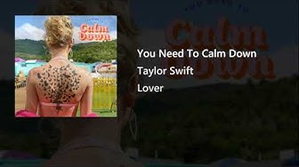 Taylor Swift - You Need To Calm Down (Extended Outro Ver)