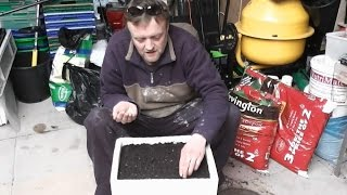 Allotment Diary : Sowing This Years Seed : Leeks, Brassicas & Onion
