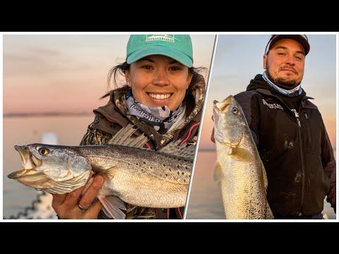 LIMIT Of BIG Trout Fishing Houston