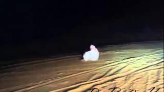 شاعر يمني يرد على السديري يقول من عدى
