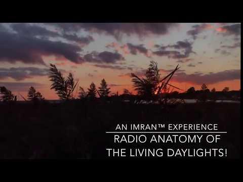 Radio Anatomy Of The Living DayLights - IMRAN™