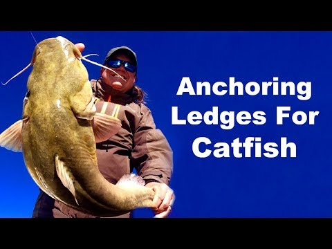 how to catch catfish in march