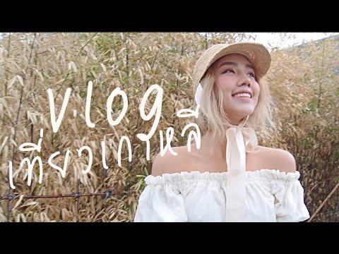 Vlog กิน เที่ยว ช้อปที่เกาหลี | Archita Station - วันที่ 05 May 2018
