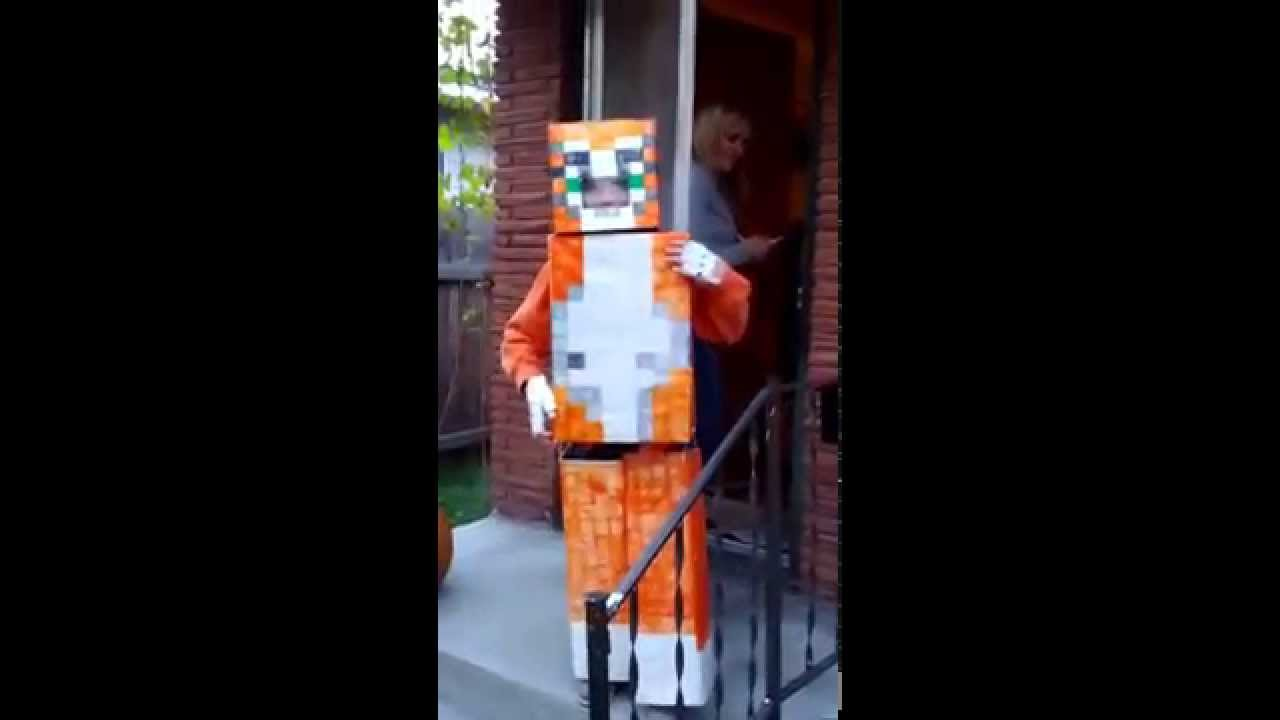 Have stampy cat costume