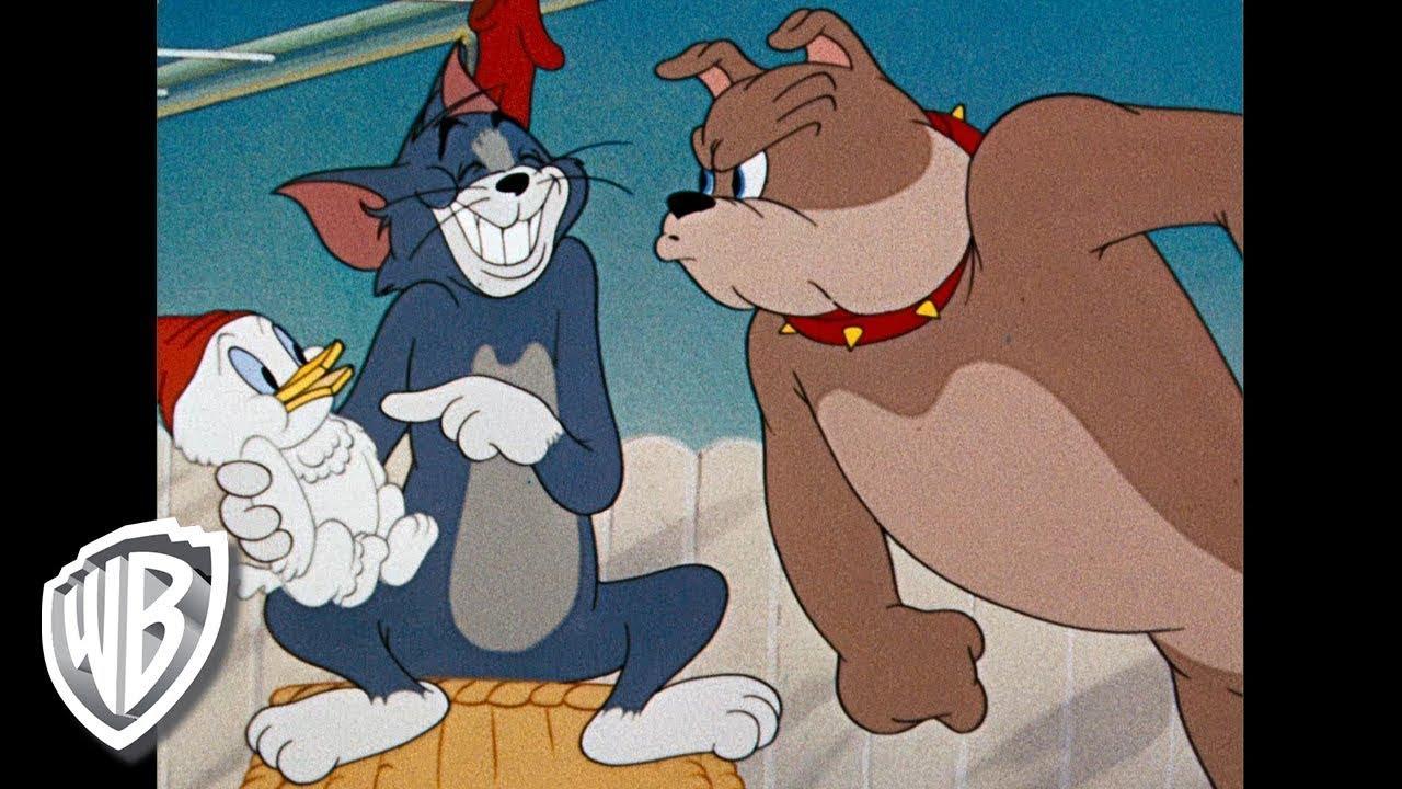 Download Tom et Jerry en Français   Compilation Classique Dessins Animés   Tom, Jerry, et Spike   WB Kids
