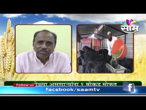 Subsidy to boost goat farming in Maharashtra