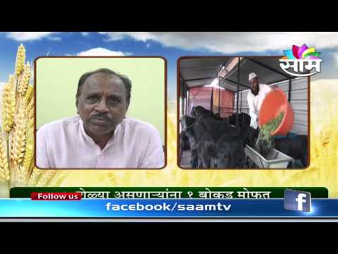Subsidy to boost goat farming in Maharashtra