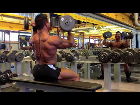 4 days out - Seated Arnold Press