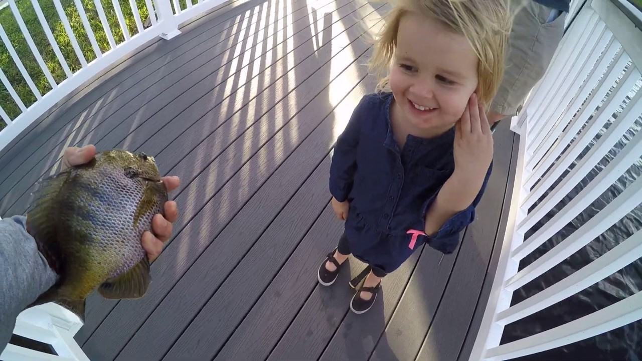 Next Generation Of Rad Says I Love You To The Fish Huge Bluegill