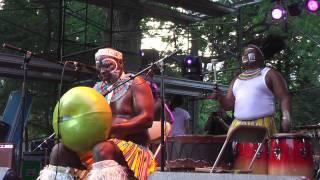 Dizu Plaatjies @ Afrofest 2011 5 8