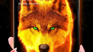 How to apply fire wolf lone wallpaper on your phone // live wallpaper // screenshot 5