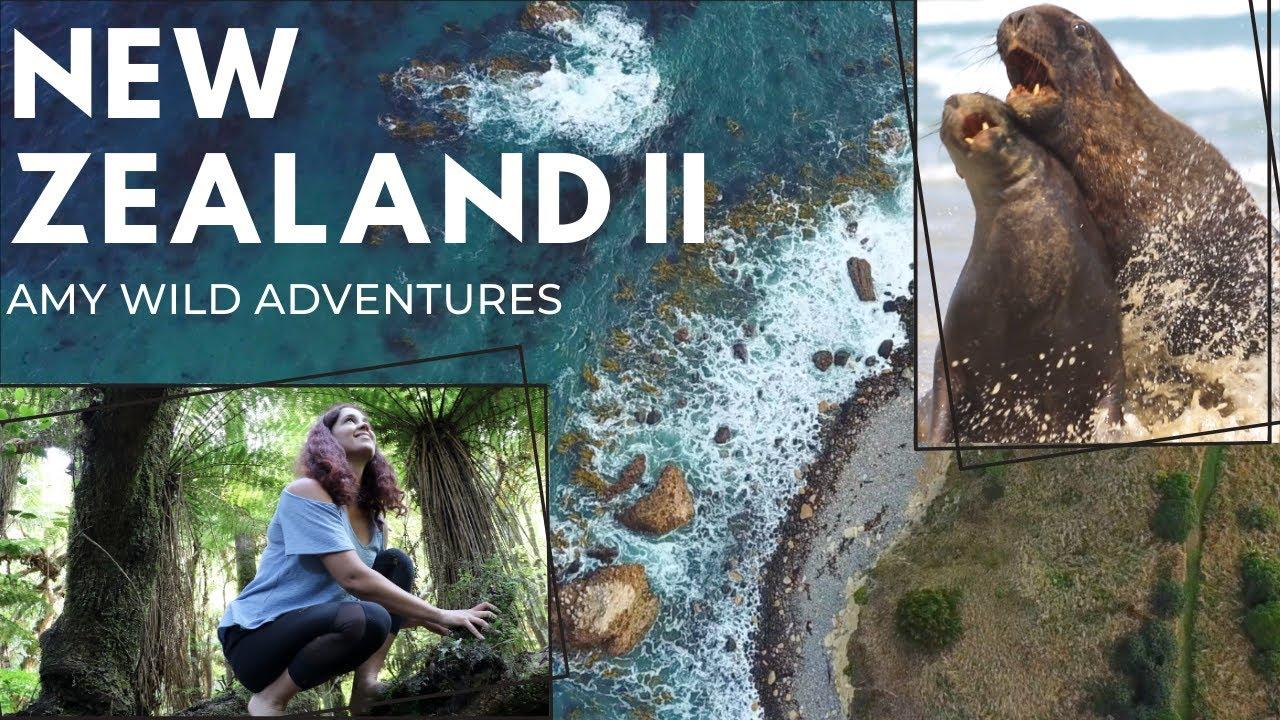 Amy Wild Adventures: New Zealand II - YouTube