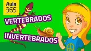 Animales Vertebrados e Invertebrados (Parte 1)   Videos Educativos para Niños