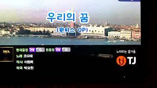 코요태 - 우리의꿈(원피스 op) 커버cover