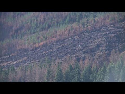 Gov. Brown Assesses Damage Left Behind By Oregon Wildfires