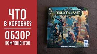 """Настольная игра """"OUTLIVE"""": НАСТОЛЬНЫЙ FALLOUT? Смотрим что в коробке // """"OUTLIVE"""" board game"""
