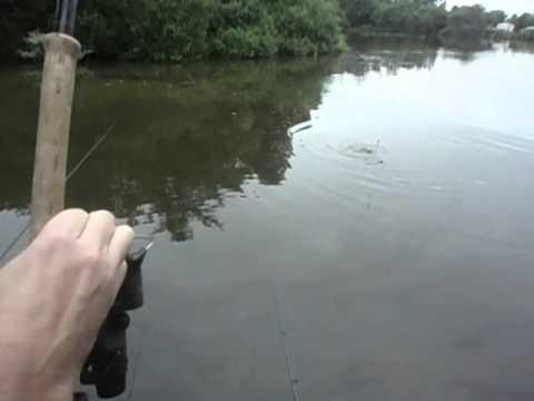 Fishing At Haven