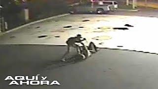 En un acto de heroísmo, policía sobrevivió a una brutal pelea con el delincuente que intentaba explo