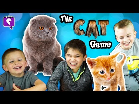 CAT Game Night with HobbyKids!
