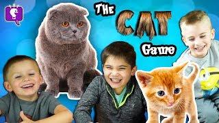 CAT Game Night with HobbyKids!