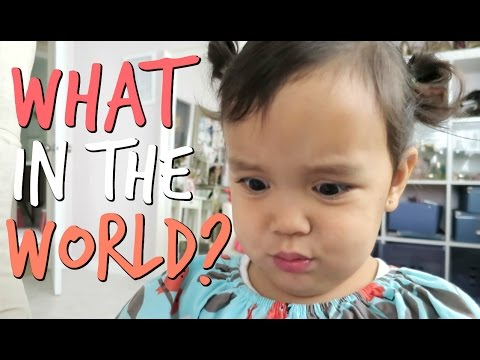 Thumbnail: WHAT IN THE WORLD IS THIS?! - October 15, 2016 - ItsJudysLife Vlogs